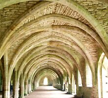 Fountains Abbey, North Yorkshire UK by GeorgeOne