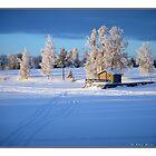 """Winterlandscape 2""  February 2009 by Maj-Britt Simble"