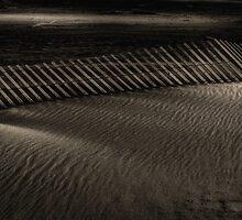 Fence in the sand by Jeffrey  Sinnock