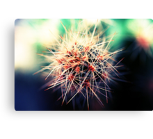 A sharpened blur Canvas Print