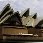 Sydney Opera House Water View by Carol Blankenship