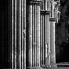 Rievaulx Abbey by Neil Messenger