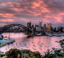 In The Pink - Sydney Harbour - The HDR Experience by Philip Johnson