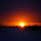 Winter Has A Habit Of Stealing The Sun by Charlotte Slade