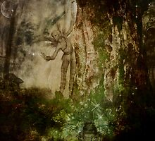 Watching In The Woods by Vanessa Barklay