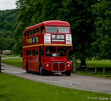 Routemaster at Chatsworth by David J Knight