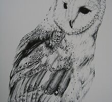 Barn Owl by iseejamespeople