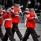 Queen&#x27;s Guards Band: Trooping the Colour, London. by DonDavisUK
