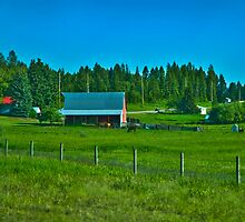Flathead County Farm by Bryan D. Spellman