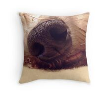 Won by a nose !! Throw Pillow