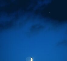 Venus and the new moon... by Allan  Erickson