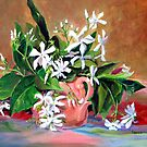 Confederate Jasmine by jimmie