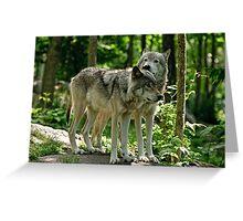Whisper Sweet Nothing - Timberwolves  Greeting Card