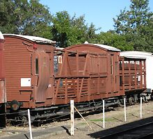Side view of train carriages. by Marilyn Baldey