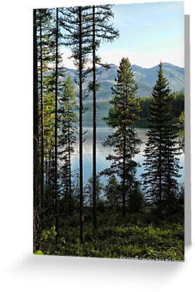 Murray Bay (Montana, USA) by rocamiadesign