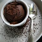Country-Style Chocolate Ice Cream by MsGourmet