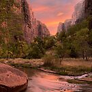 Stunning Golden orange sunset at Virgin River walk, Zion NP, Utah by Soumya Mitra