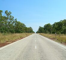 the Stuart Highway, Nortern Terrotory, Australia by Neil Mouat