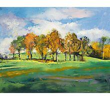Autumn Light Photographic Print