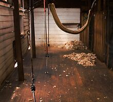 A sheep shearing shed at Brickendon, Tasmania by Elana Bailey
