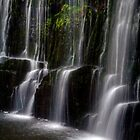 Guide Falls, Tasmania by Elana Bailey