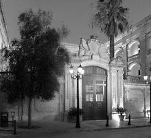 Vilhena Palace monochrome by M G  Pettett