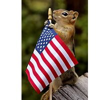 Jasper On Flag Patrol  Photographic Print