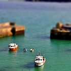 little boats by Mike Higgins