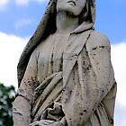 St. Joseph Catholic Cemetery - 5 by James Formo