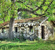 Old Stone Cabin by wileyphotoart