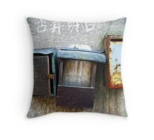 Cheque's in the mail Throw Pillow