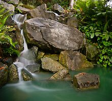 Auburn Chinese Garden Waterfall by Victor Phaon