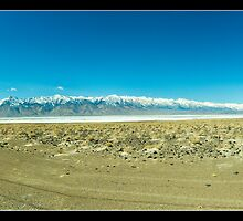 Owens Lake Panorama by Tim Topping