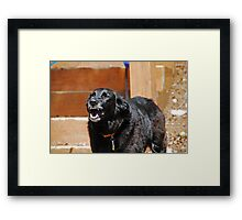 Hurry Up Mom! Framed Print