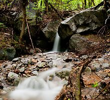 Small Waterfall by Sam Scholes