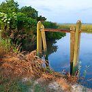 Flood Gates by Charlie