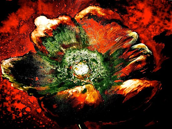 Abstract...Poppy by © Janis Zroback