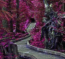 Pathway to FantasyLand by Bob Hortman