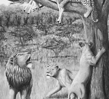 Possession - Leopard and Lions by Heather Ward