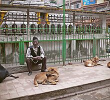 A Nepali man and dogs by jihyelee