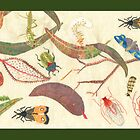 &quot;Leaf litter with bugs&quot; by Mary Taylor
