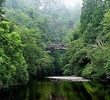 The lost bridge of Foyers, Loch Ness, Scotland. by Roy  Massicks
