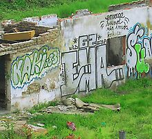 Colorful grunge grafitti on little,old,deserted house by akisa