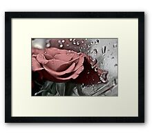 Silver rose. by Brown Sugar. Guns N Roses - Knocking On Heaven's Door . Views (907) . Favs (6). Thanks !!! FEATURED in Safe-haven group. Framed Print