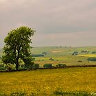 Towards Bakewell by Aggpup