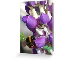 Bee on Blue Lupin Greeting Card