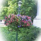 Lamp Post Garden #2 by azkope
