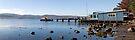 Cornelian Bay Boat Shed - Hobart by Anthony Davey