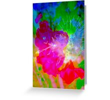Morning light on the red lilies Greeting Card
