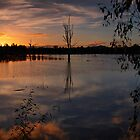 Wonga Wetlands sunset by John Vandeven